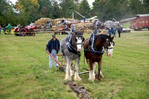 Links: Plowing Match
